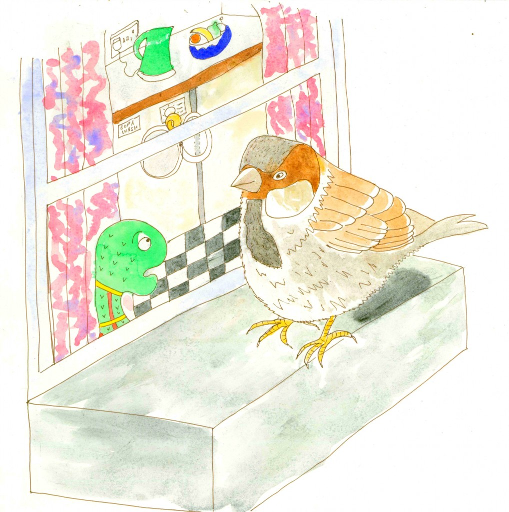 Sparrow-Sock-Window-online-2